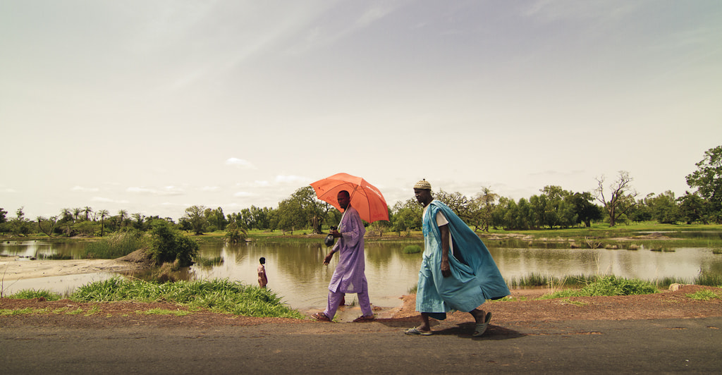 Photograph The Gambia - Street 02 by David Botella on 500px