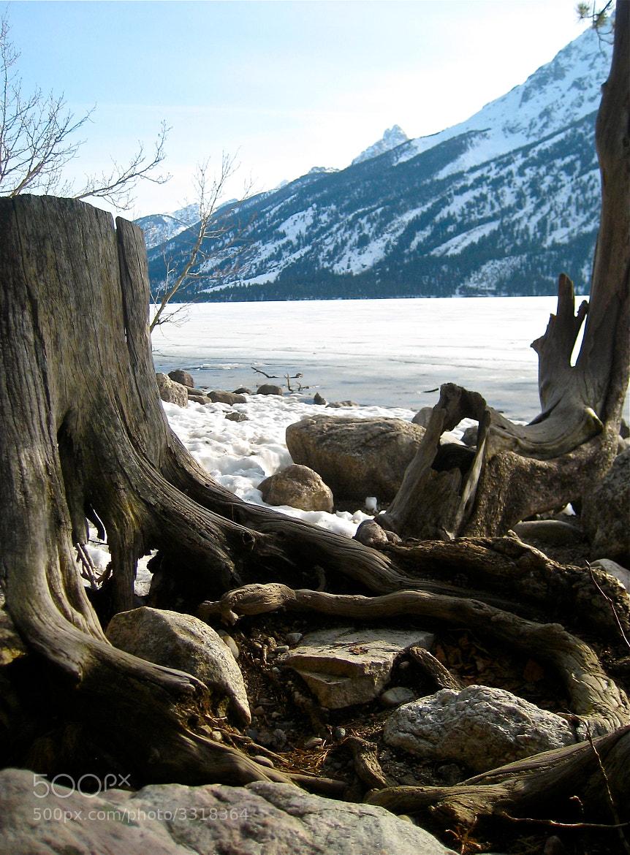 Photograph Jenny Lake  by Kory Ingersoll on 500px