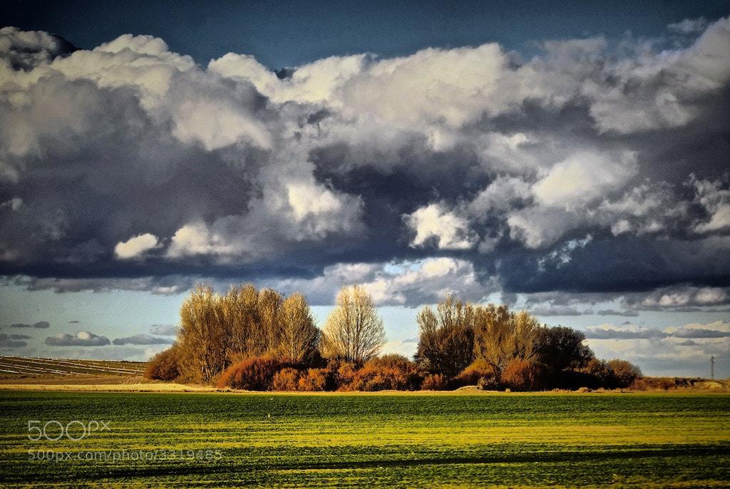 Photograph Por campos de Castilla by Luis Martínez on 500px