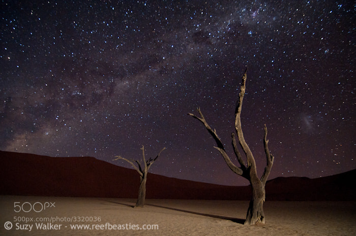 Photograph Milky Way at Deadvlei by Suzy Walker-Toye on 500px