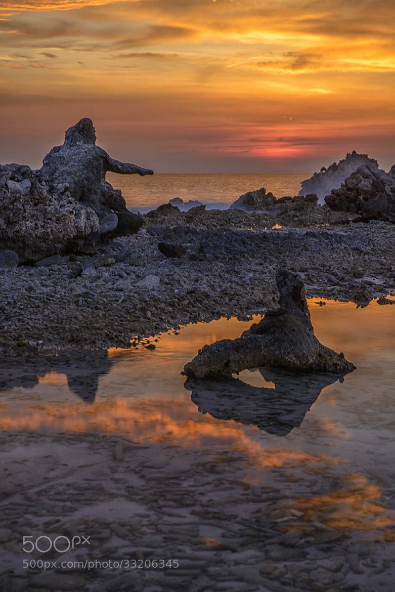 Photograph Man of coral by Lorenzo Mittiga on 500px