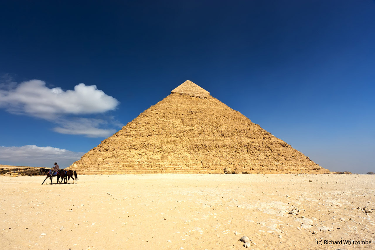 Photograph A horse riding past the Khafre Pyramid, Giza by Richard Whitcombe on 500px