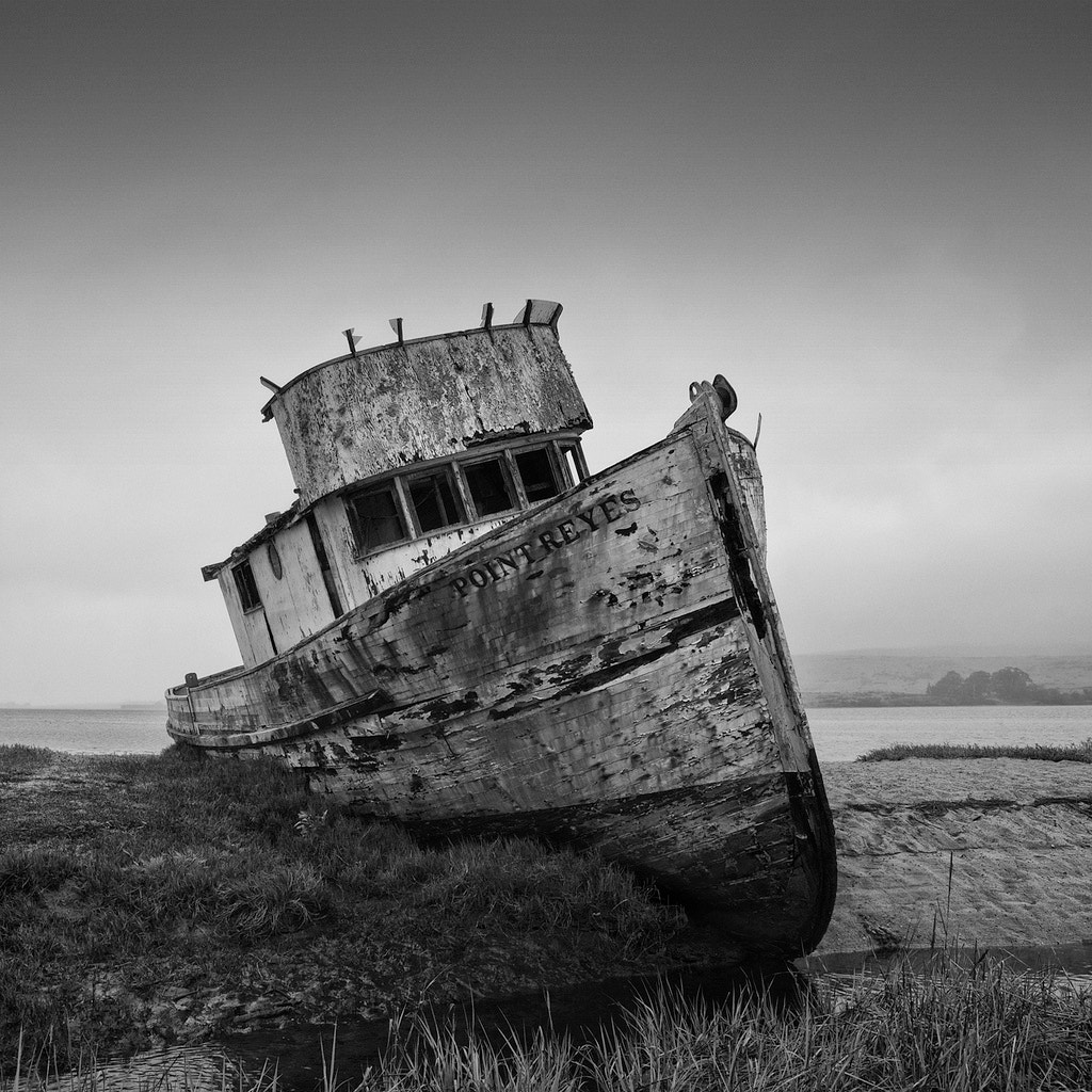 Photograph Gilligan by Brian Day on 500px