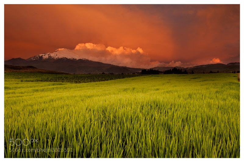 Photograph Cayambe Sunset by Fernando Salas on 500px