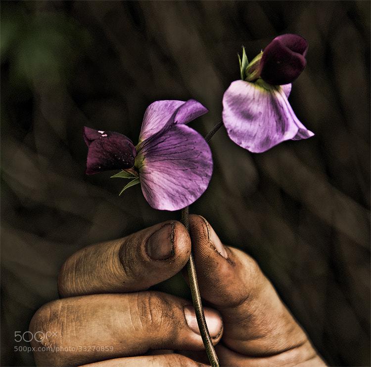 Photograph Hope by Patrizia Paradiso on 500px