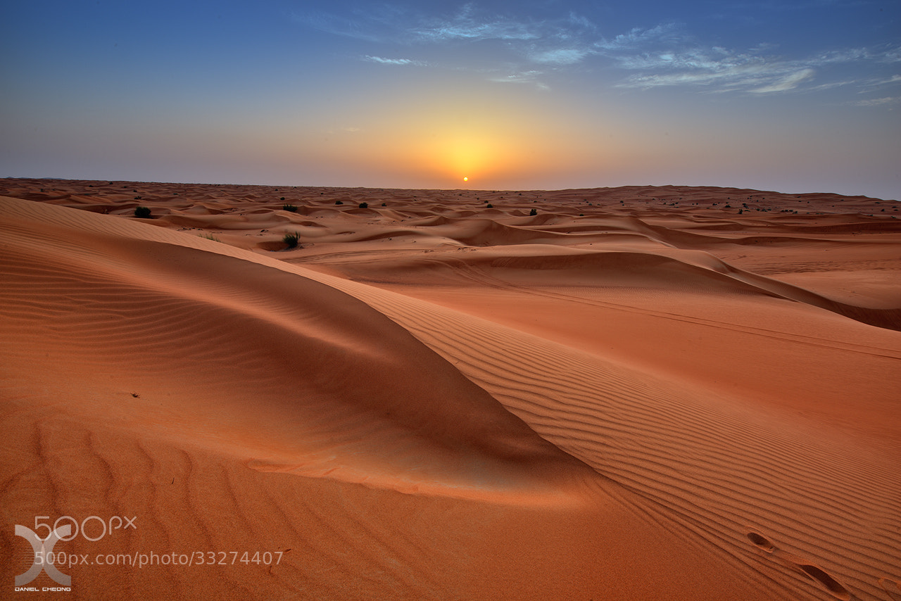 Photograph The Sound Of Silence by Daniel Cheong on 500px