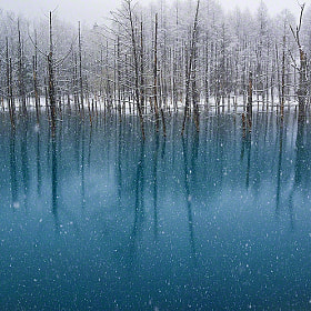Blue Pond-The Snowfall in May