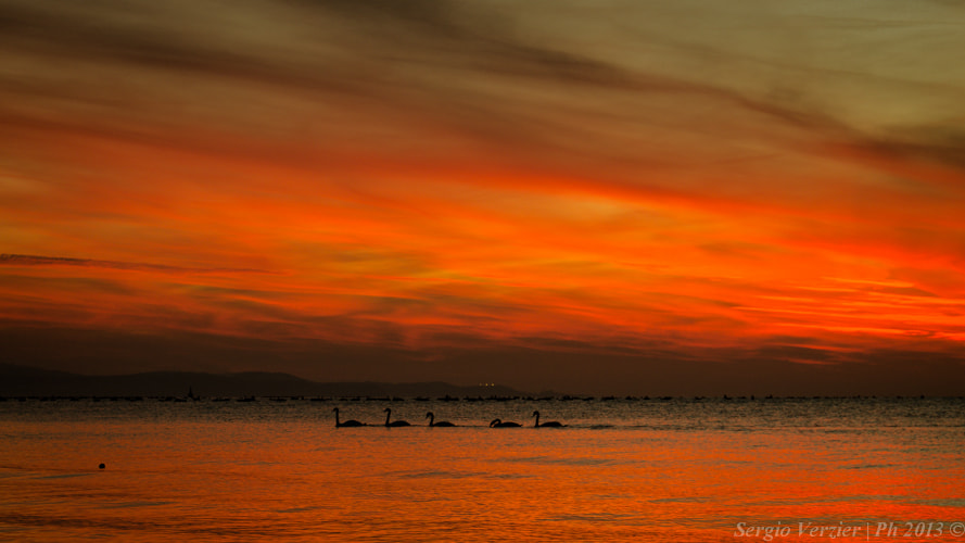 Photograph in five at sunset by Sergio Verzier Photography on 500px