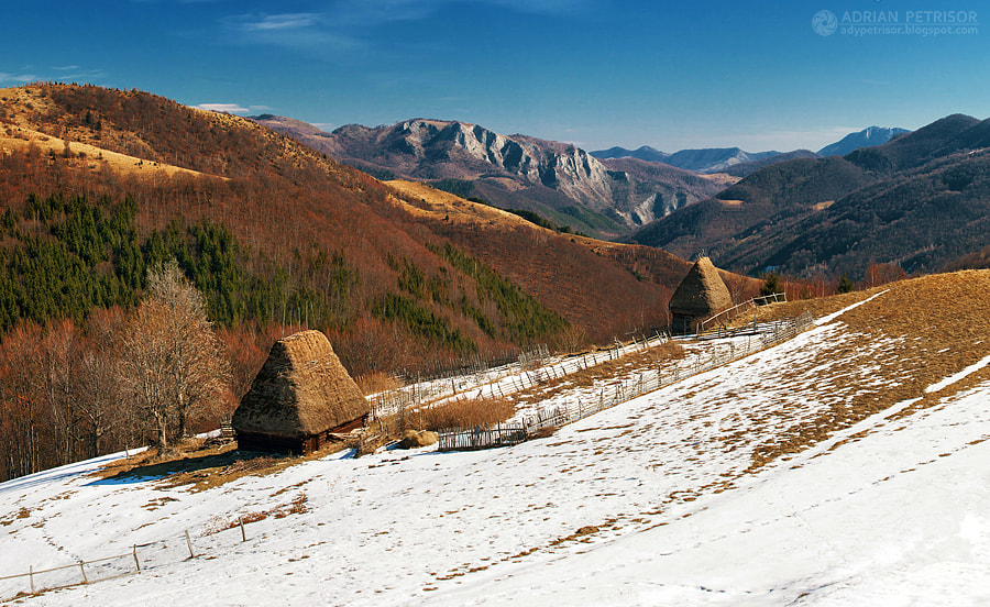 Photograph Winter`s gone by Adrian Petrisor on 500px
