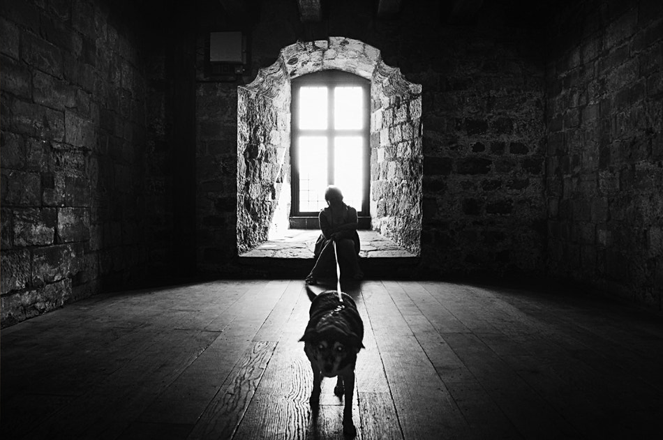 Photograph A lady and her dog by David Mar Quinto on 500px