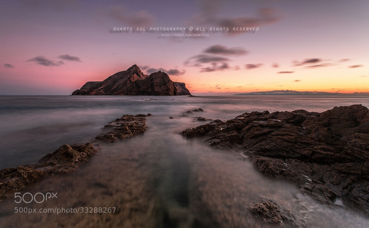 Photograph Violet Skies II by Duarte Sol on 500px