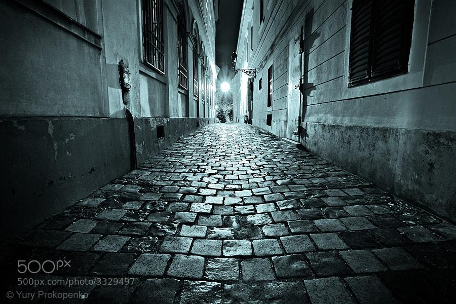 Photograph Night Walk in Budapest by Yury Prokopenko on 500px