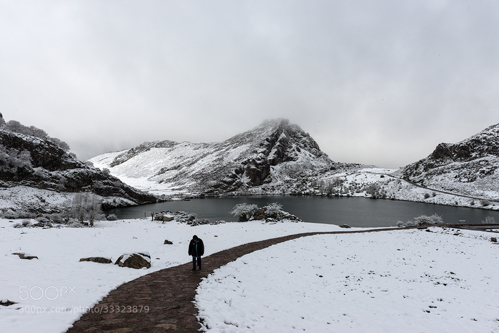 Photograph Alone in the snow by Jorge Orfão on 500px