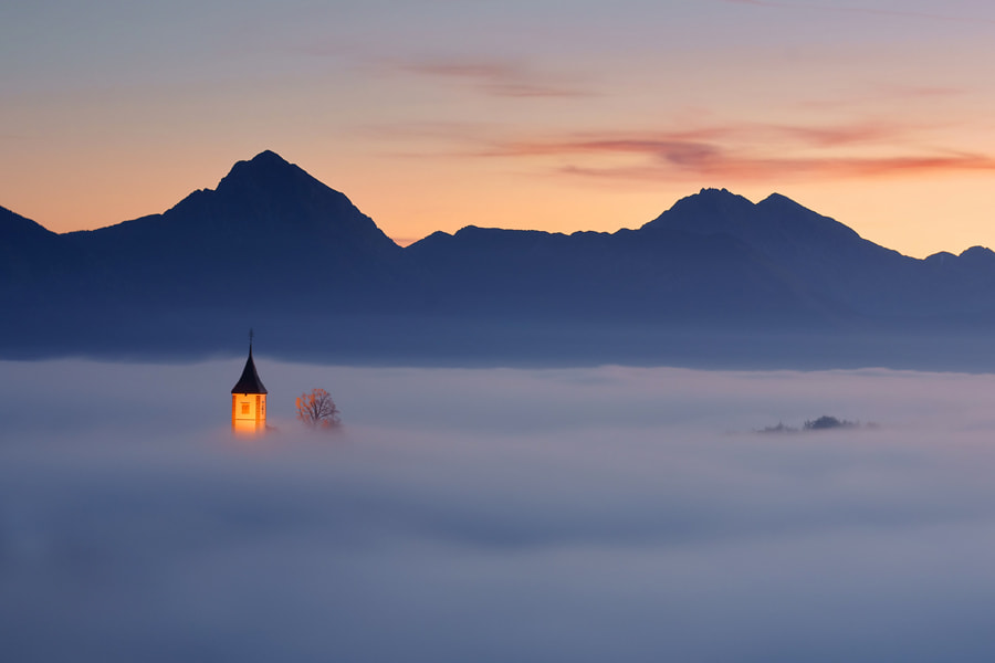 Photograph Kiss of nature by Janez Tolar on 500px