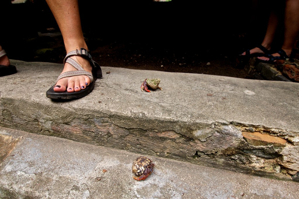 Photograph Watch your toes by Michael Ross on 500px