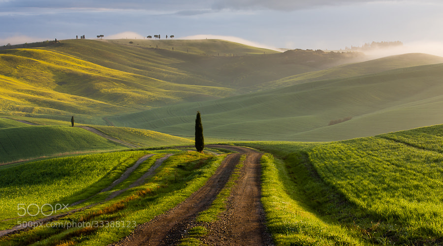 "<a href=""http://www.hanskrusephotography.com/Landscapes/Tuscany/7561797_L8HLXs#!i=2520501799&k=M5gghZ4&lb=1&s=A"">See a larger version here</a>
