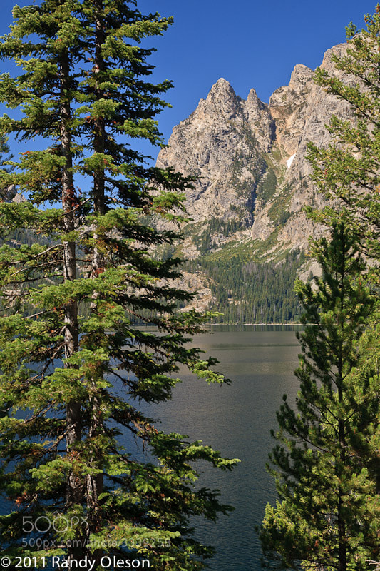Photograph Jenny Lake Landscape by Randy Oleson on 500px