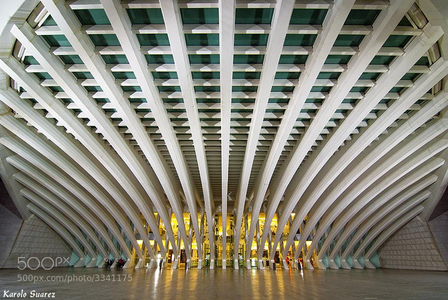 Photograph Calatrava by Karolo Suarez on 500px