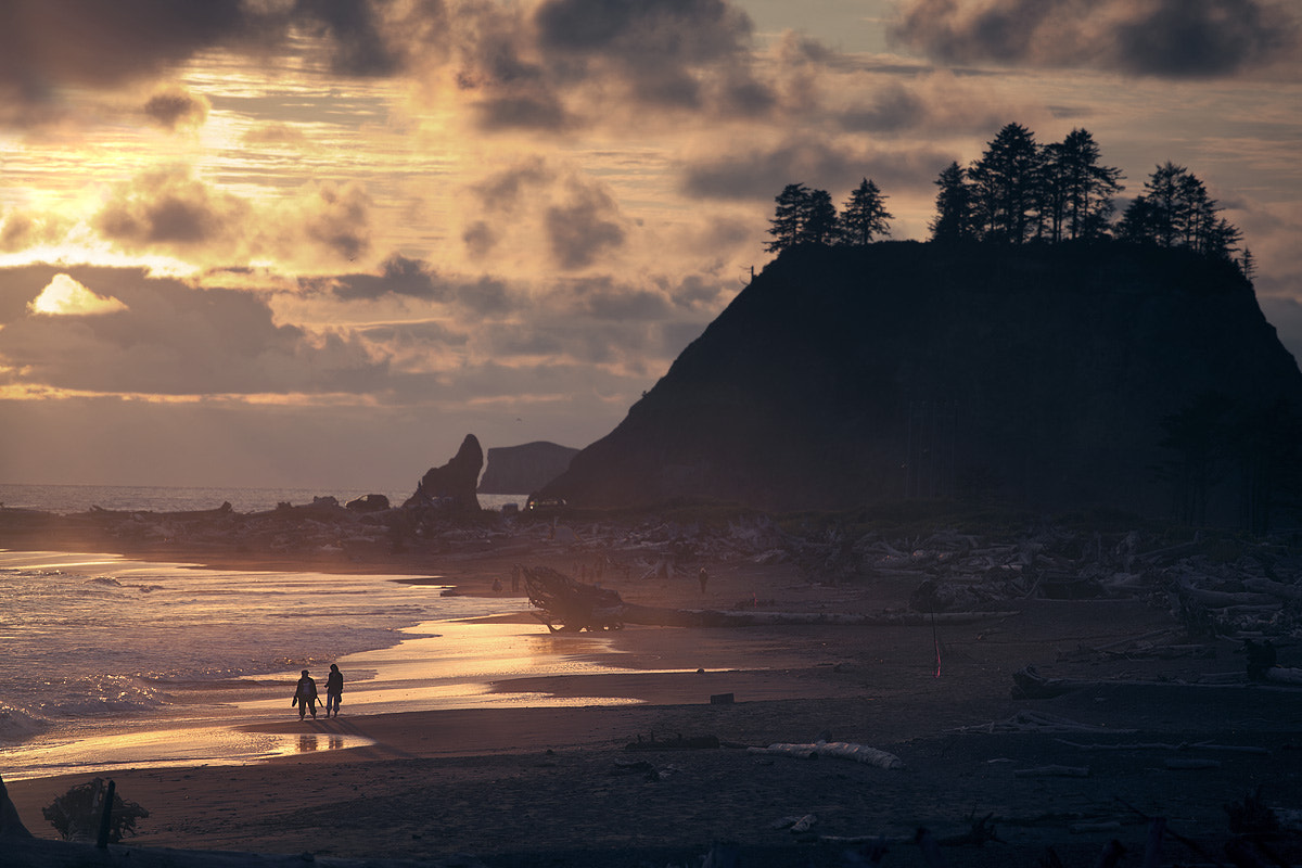 Photograph Beach bones and a sunset by Sparth (Nicolas Bouvier) on 500px
