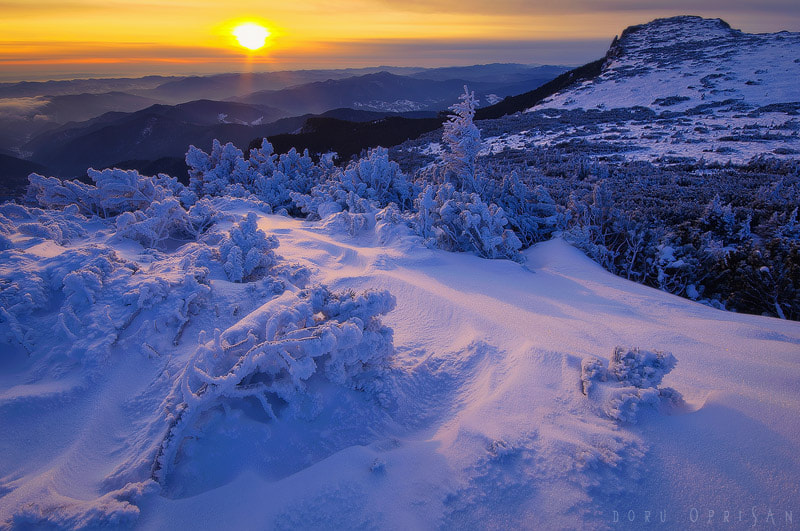 Photograph Cold Sunrise by Doru Oprisan on 500px