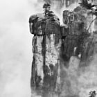 Heavy low lying clouds in Yosemite National Park allow for separation of the lone tree from the dark granite in the background as a boulder wedges to separate the spire from the rest of the cliff.