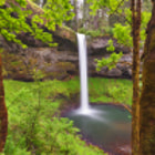 The beautiful falls of Silver Springs State Park offer an almost Jurrassic experience, especially in late Spring.