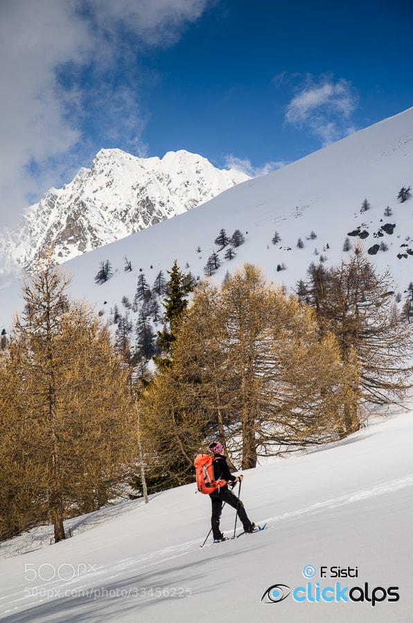 Photograph Dentro le emozioni primaverili... (Valle di Saint-Barthelemy, Valle d'Aosta) by Francesco Sisti on 500px