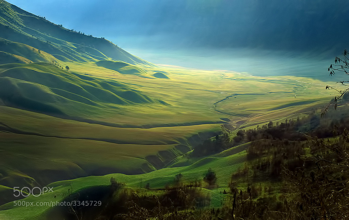 Photograph Green valley of tengger by Suhardjo M on 500px
