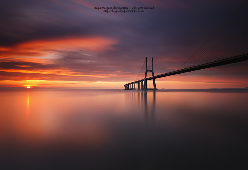 Photograph Red spear by Hugo Marques on 500px