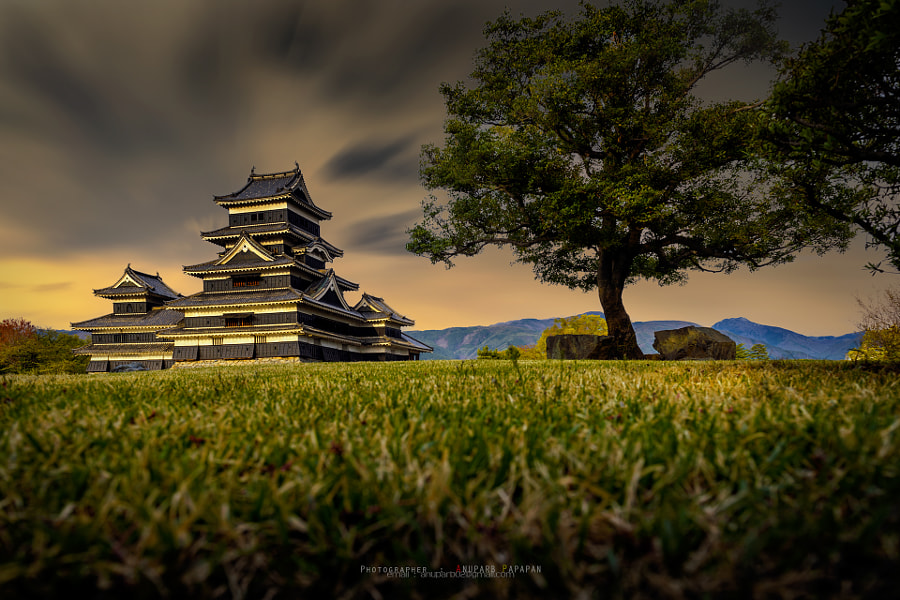 Matsumoto Castle on the Ground by Anuparb Papapan