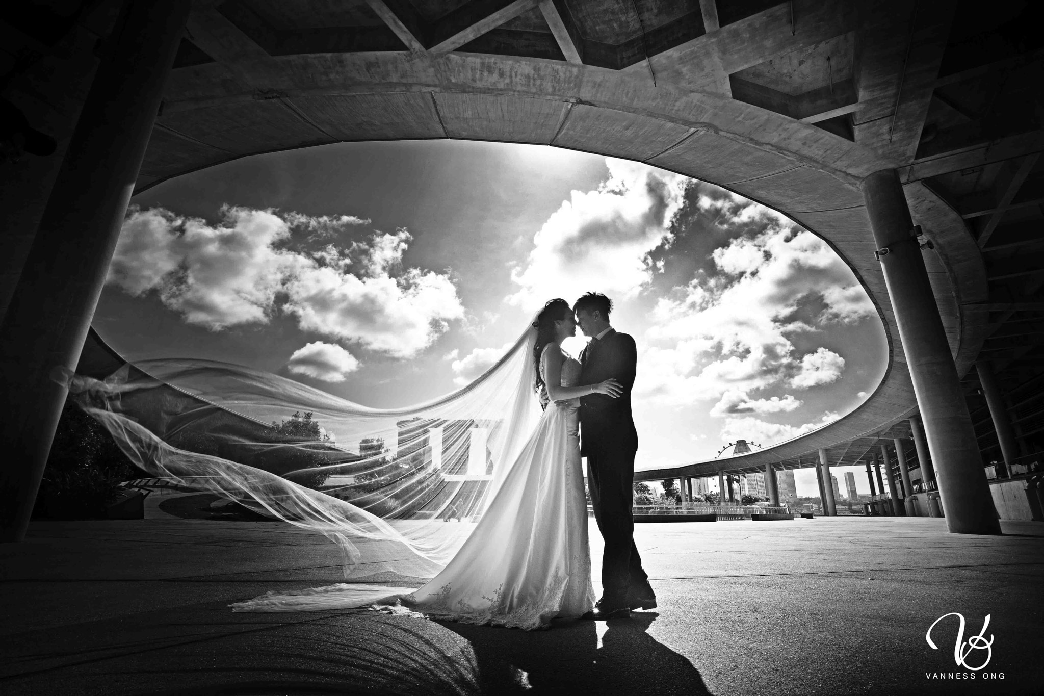 Photograph Wedding by Vanness Ong on 500px