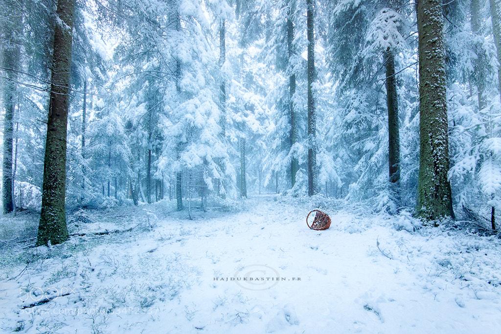 Photograph Frozen april by Bastien HAJDUK on 500px