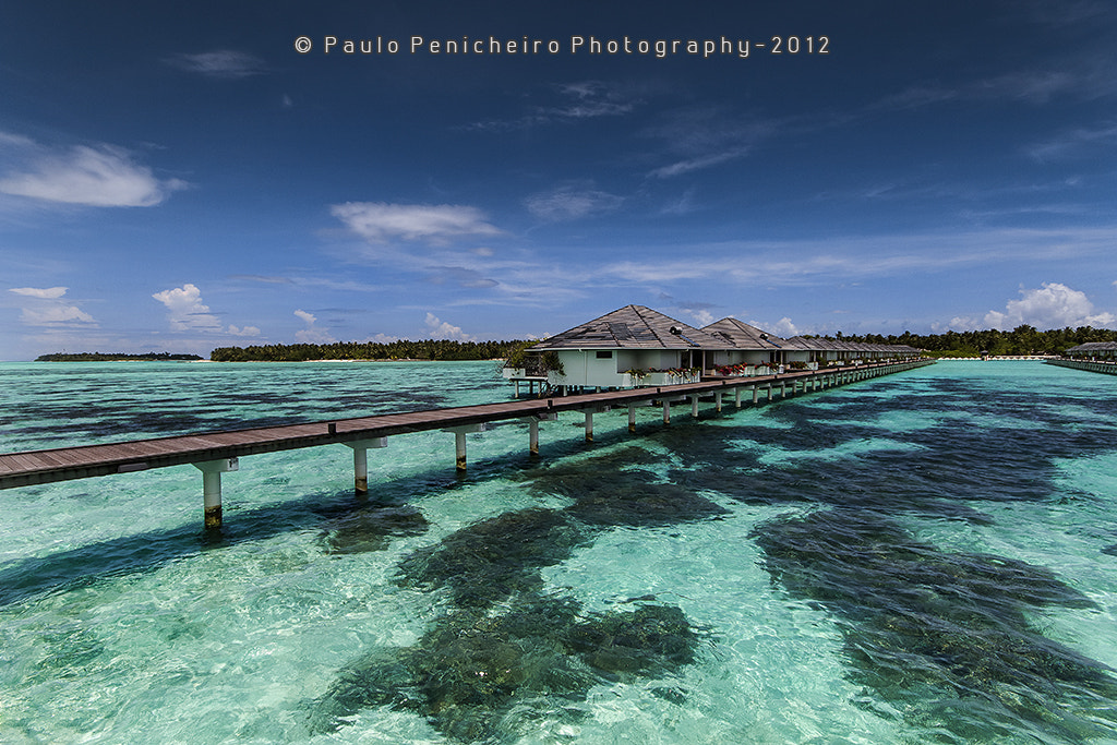 Photograph The Love Huts by Paulo Penicheiro on 500px