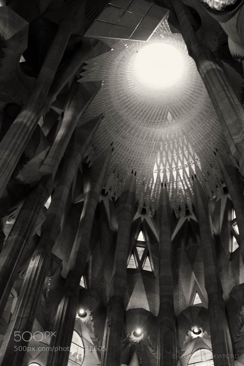 Photograph Inside Sagrada Familia #4 by Stuart Crawford on 500px