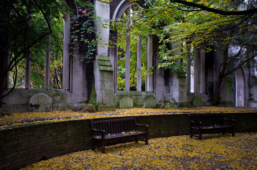 Autumn at St Dunstan