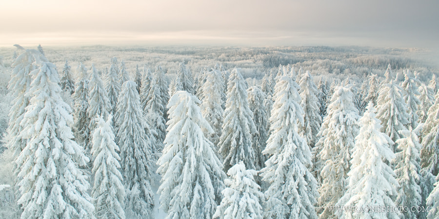 Simply Sellable: The View from the Top of Estonia - 500px