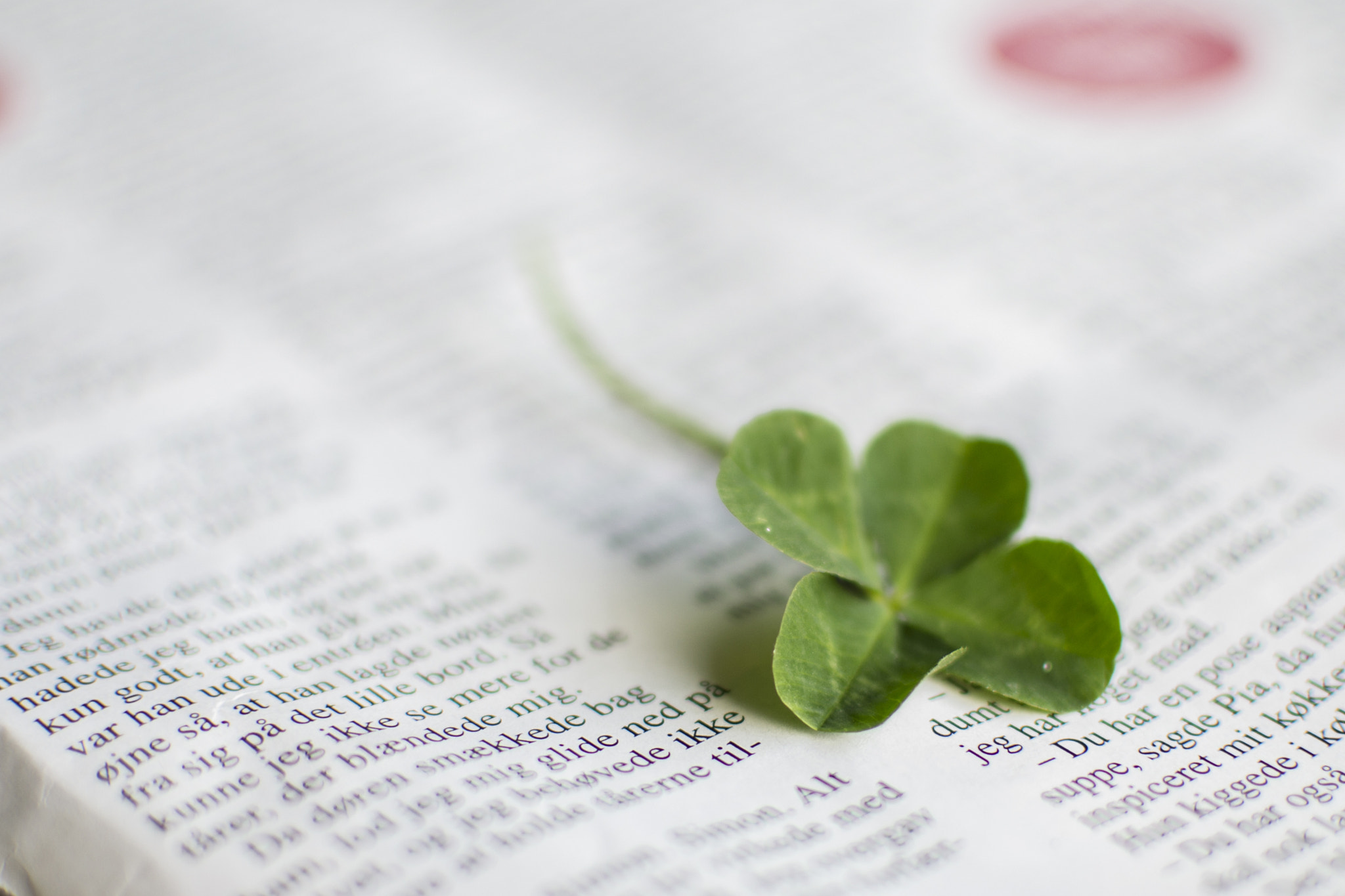 Photograph A little luck on found the way by John Knutsson on 500px