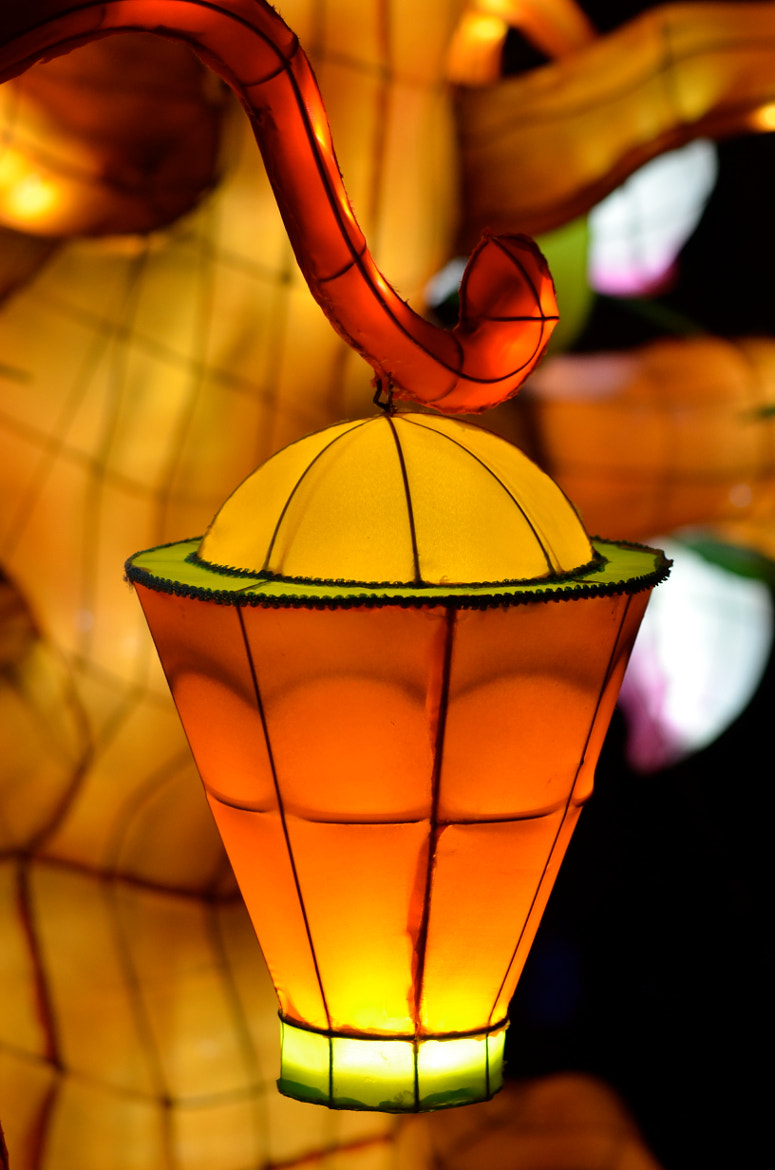 Photograph Chinese lanterns by Jinny Montpetit on 500px