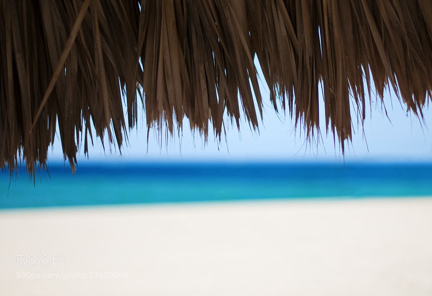 Photograph Beach 2 by Natalya Laykina on 500px