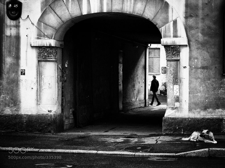 Photograph He's gone (limited edition fine art prints available) by Key GROSS (Konstantin Smirnov) on 500px