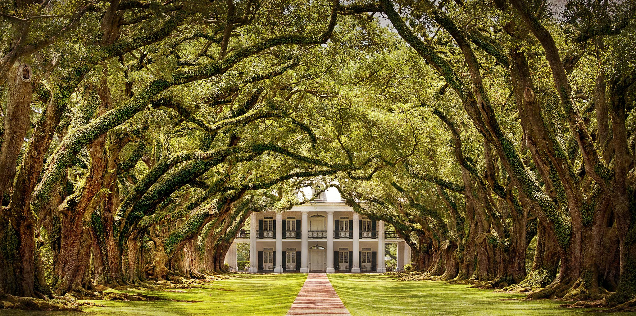 Photograph Oak Alley Plantation by Dirk Seifert on 500px