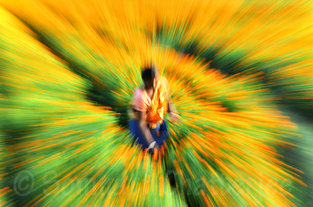 Photograph COLOR BLAST by Somnath Chatterjee on 500px