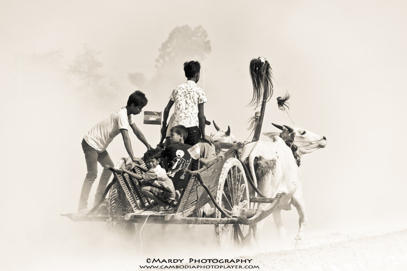 Photograph Khmer Cow Cart ! by Mardy Suong Photography on 500px