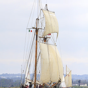 Tall Ships come to Drogheda 5