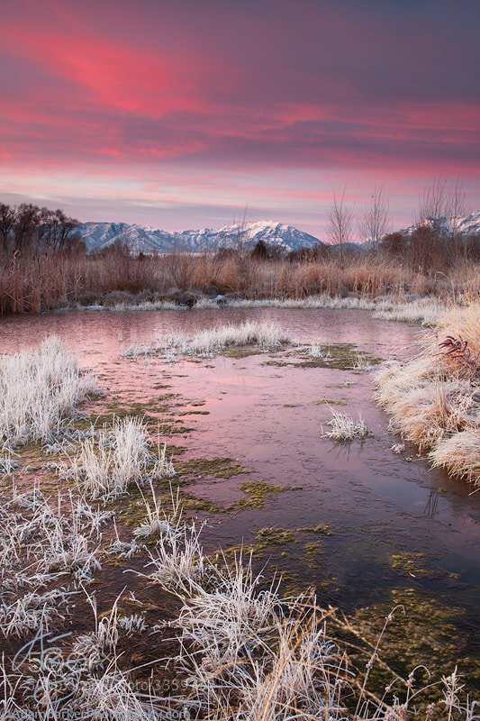 Photograph Winter's Blessing by Adam Barker/AdamBarkerPhotography.com on 500px