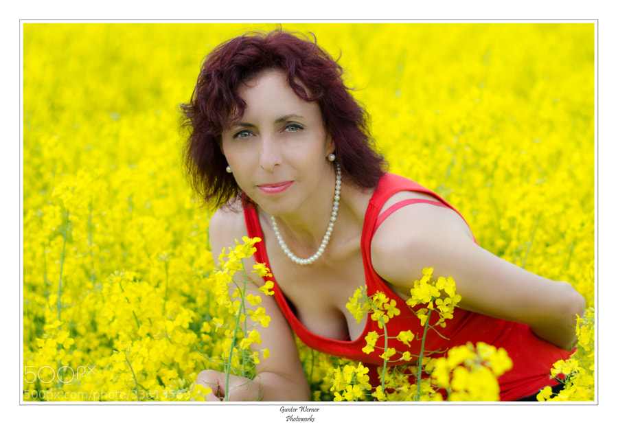 Photograph yellow spring by Gunter Werner on 500px