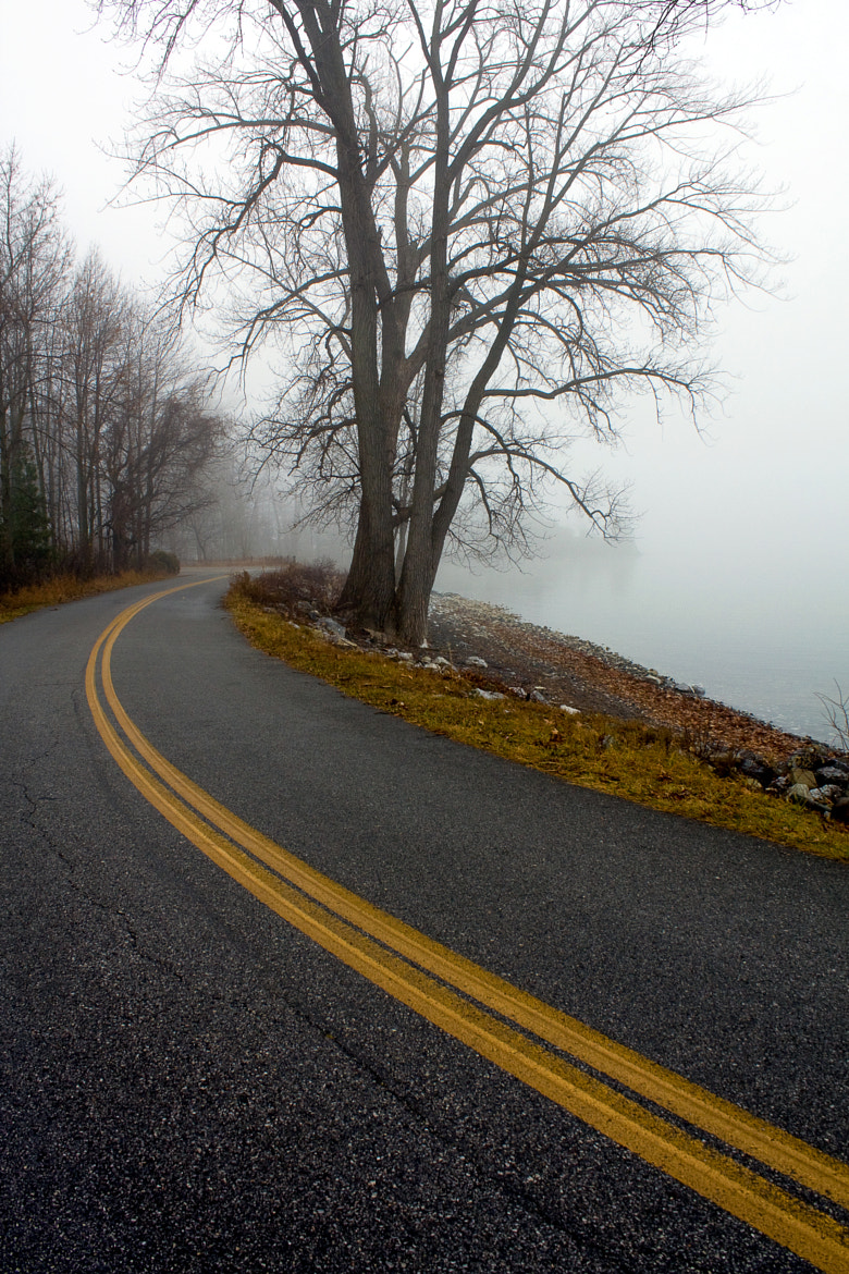 Photograph Shoreside Foggy Road by Kirk Marshall on 500px
