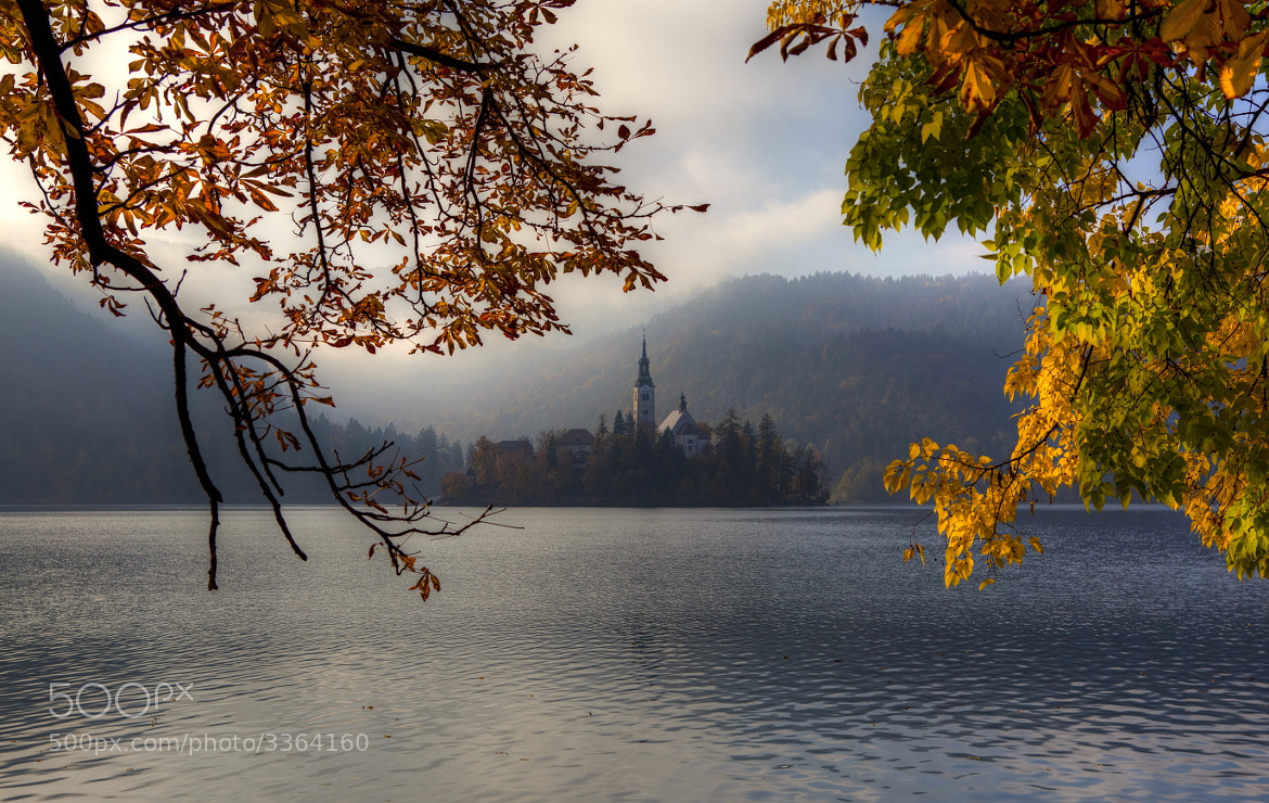 Photograph  Autumn in Bled by Béla Török on 500px