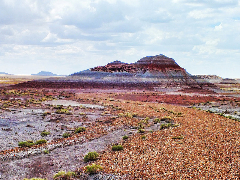 Photograph VIEW IN THE PETRIFIED FOREST by Tom Poscharsky on 500px