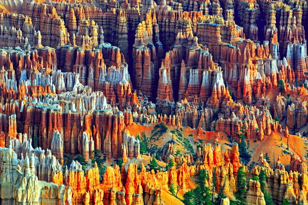 Photograph Sunrise at Bryce Canyon, Bryce Point by ingosb on 500px